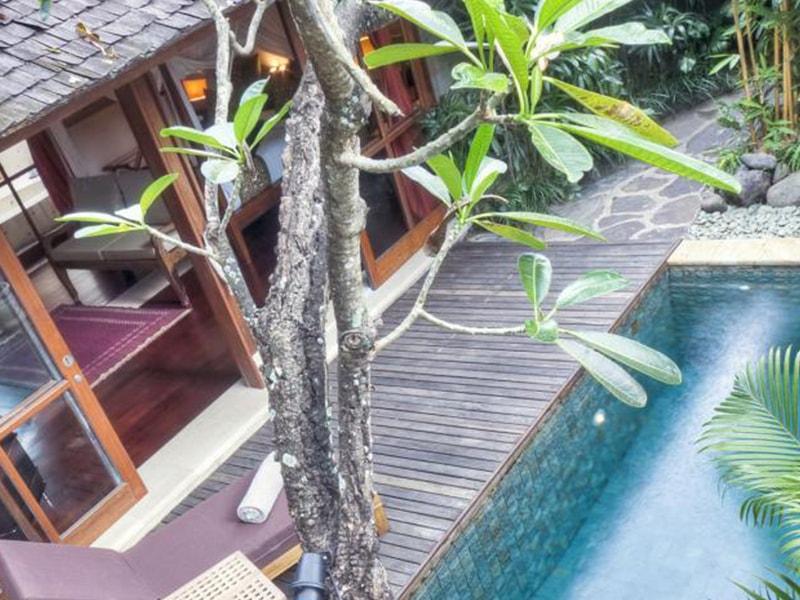 Jamahal Private Resort (4)