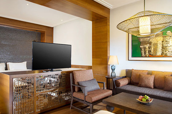 One Bedroom Suite2