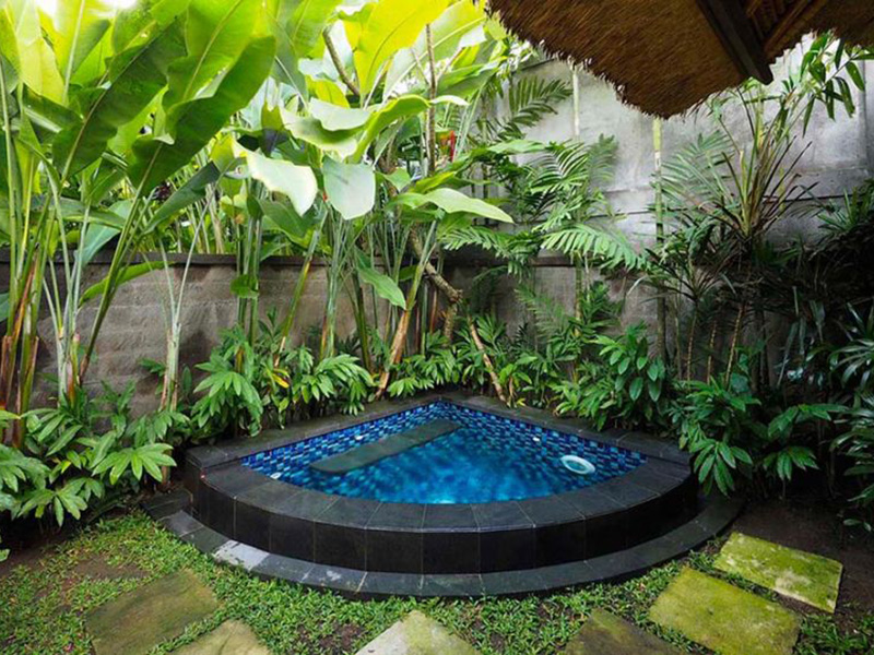 Plunge Pool Villa3