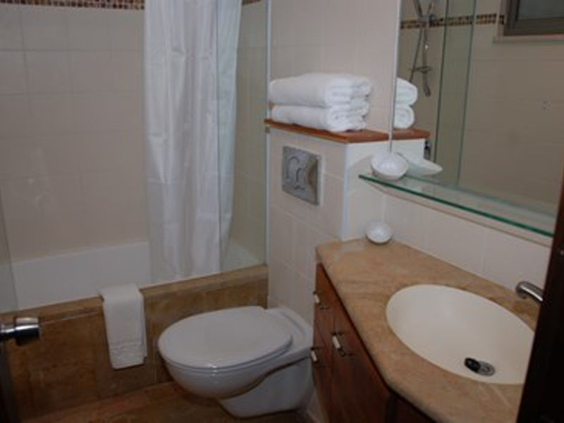 bathroom-custom