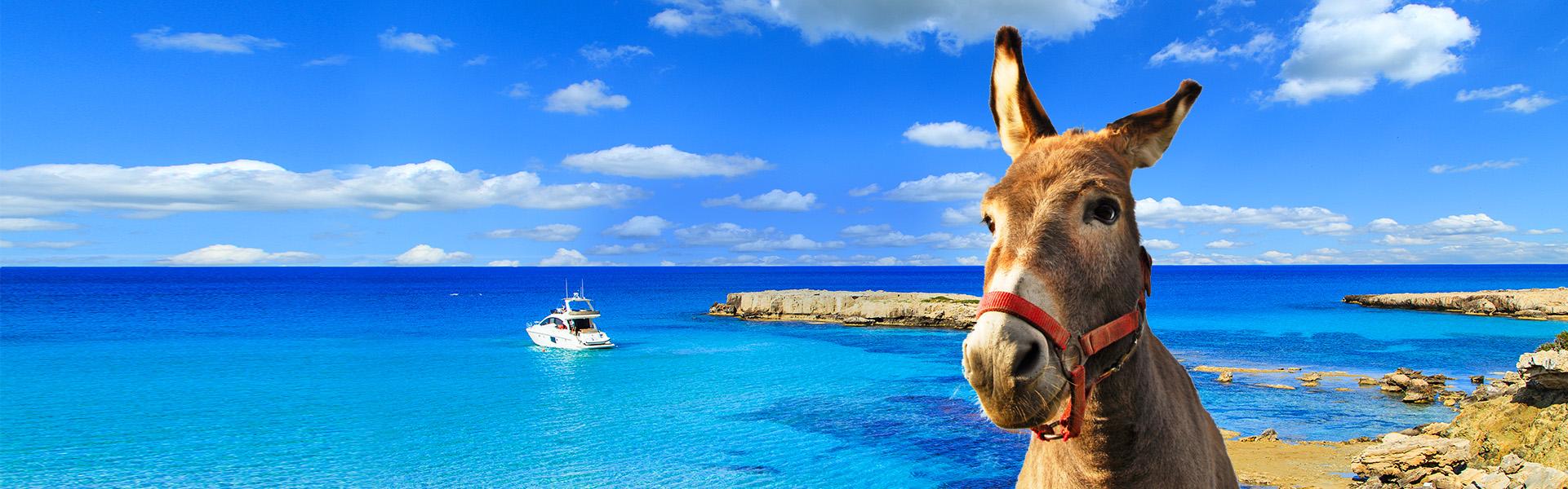Отдых на Кипре, цены: купить горящие туры, путевки на Кипр из Киева. Поиск  тура от Join UP!
