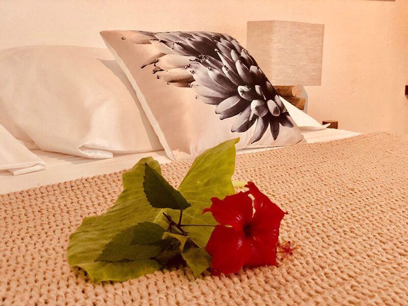 Bliss Hotel Praslin (3)
