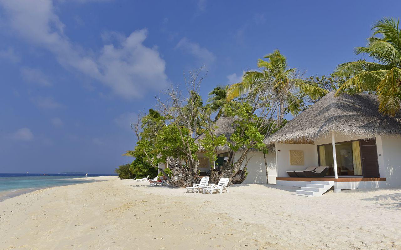 DL-HRES-Dreamland_Beach_Bungalow_02