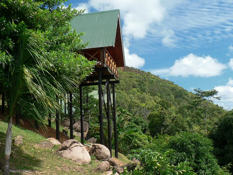 Mango Lodge (33)