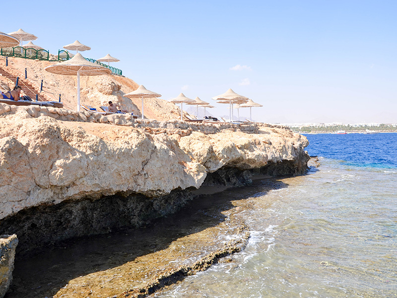 Grand Halomy Resort31