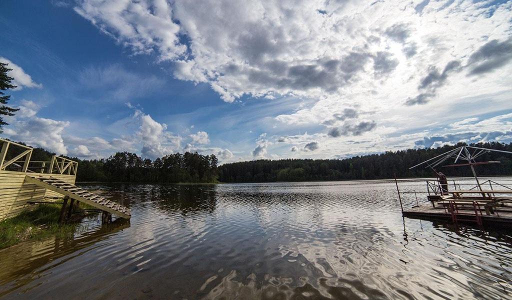 лесные озера-3004 (13)