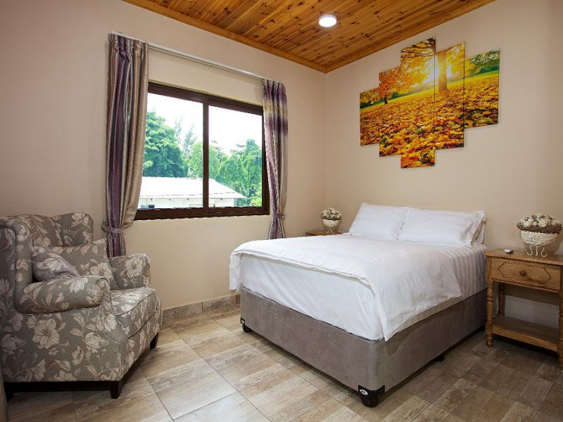 Stone Self Catering Apartment (25)