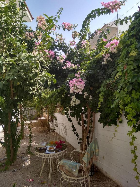 Panoram GV rooms_Garden