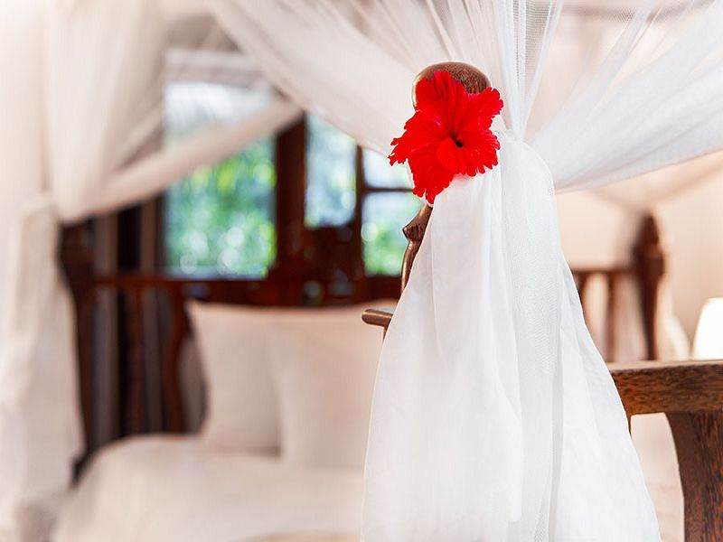 White Paradise Zanzibar (12)
